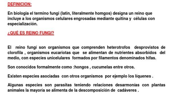 Definición de reino fungi